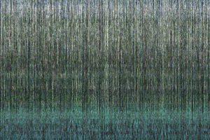 Algoritmie:output / landscape.fragmented / Brigitte Felician Siebrecht