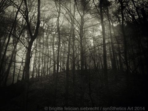 magic is mine -Serie Brigitte Felician SIebrecht